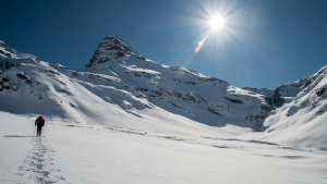 Snowshoeing tour with Arctic Booking Kvaløya