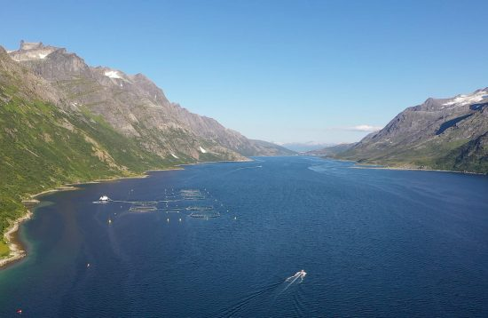 Rent a boat, Arctic Booking, Ersfjordbotn 9107